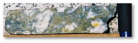 Drill Core - Bonanza to high-grade gold +/- silver in quartz-sulphide veins